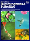 How to Attract Hummingbirds & Butterflies - Mathew Tekulsky