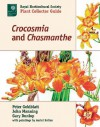Crocosmia and Chasmanthe - Peter Goldblatt, John Manning