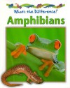 Amphibians - Stephen Savage