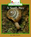 A Snail's Pace - Allan Fowler