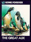 The Great Auk - Emily Crofford