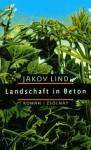 Landschaft In Beton - Jakov Lind