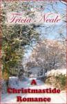 A Christmastide Romance - Tricia Neale, Richard Mason, Tricia Mason