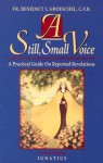A Still Small Voice: A Practical Guide on Reported Revelations - Benedict J. Groeschel