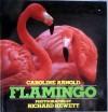 Flamingo - Caroline Arnold