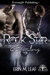 Rock Star Baby - Erin M. Leaf