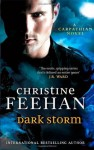 Dark Storm: Number 23 in series ('Dark' Carpathian) - Christine Feehan