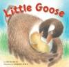 Little Goose - David Mraz, Margot Apple