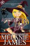 Accidental Leigh (Literal Leigh Romance Diaries Book 1) - Melanie James