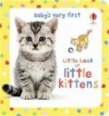 Little Book of Little Kittens (Baby's Very First Little Books) - Antonia Miller