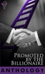 Promoted by the Billionaire - J.P. Bowie, Marie Sexton, Rowan Speedwell, S.L. Majors, Em Woods, Sara York, Noelle Keaton