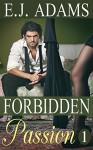 Forbidden Passion 1 - E.J. Adams