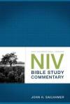 NIV Bible Study Commentary - John H. Sailhamer