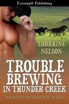 Trouble Brewing in Thunder Creek - Lorraine Nelson