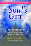 Your Soul's Gift eChapters - Chapter 6: Abusive Relationships: The Healing Power of the Life You Planned Before You Were Born - Robert Schwartz