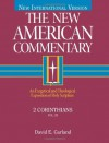 2 Corinthians: An Exegetical and Theological Exposition of Holy Scripture - David E. Garland