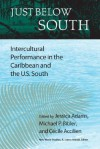 Just Below South: Intercultural Performance in the Caribbean and the U.S. South - Jessica Adams, Michael Bibler, C?cile Accilien