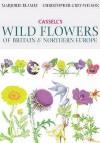Cassell's Wild Flowers Of Britain & Northern Europe - Christopher Grey-Wilson