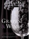 Grapes And Wines: A Comprehensive Guide To Varieties And Flavours - Oz Clarke