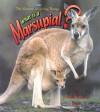 What Is a Marsupial? - Bobbie Kalman