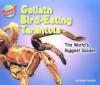 Goliath Bird-Eating Tarantula: The World's Biggest Spider - Meish Goldish