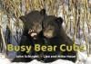 Busy Bear Cubs - John Schindel, Lisa Husar, Mike Husar