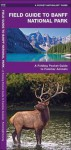 Field Guide to Banff National Park: An Introduction to Familiar Species - James Kavanagh, Raymond Leung