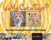 Is My Cat a Tiger?: How Your Pet Compares to Its Wild Cousins - Jenni Bidner