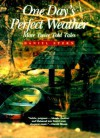 One Day's Perfect Weather: More Twice Told Tales - Daniel Stern