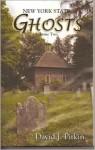 New York State Ghosts, Volume Two - David J. Pitkin