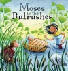 Moses in the Bulrushes. by Katherine Sully - Katherine Sully