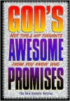 "God's Awesome Promises: ""Excellent Gift for Wednesday Night Visitors."" ""Great Tool for Fall Youth Programs."" - Jack Countryman"