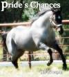Pride's Chances - Jill Edwards, Sherilyn Likewise