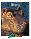 Hippos - Beth Wagner Brust