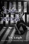 A Tragic Wreck - T.K. Leigh