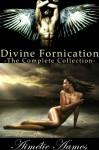 Divine Fornication-The Complete Collection - Aimélie Aames