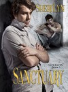 Sanctuary (Safe Haven Series Book 2) - Sheri Lyn Galarza