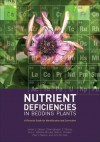 Nutrient Deficiencies in Bedding Plants: A Pictorial Guide for Identification and Correction - James L. Gibson, Dharmalingam S. Pitchay, Amy L. Williams-Rhodes, Brian E. Whipker, Paul V. Nelson, John M. Dole