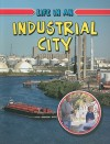 Life in an Industrial City - Lizann Flatt