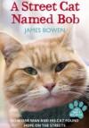 A street cat named Bob - James Bowen