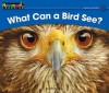 What Can a Bird See? (Rising Readers) - John Serrano