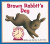 Brown Rabbit's Day - Alan Barker