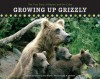 Growing Up Grizzly: The True Story of Baylee and Her Cubs (Falcon Guide) - Amy Shapira, Douglas H. Chadwick