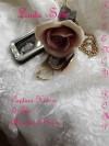 Captain Havers & The Abandoned Bride/Regency Romp 4 (Regency Romps) - Linda Sole