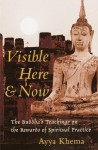 Visible Here and Now: The Buddhist Teachings on the Rewards of Spiritual Practice - Ayya Khema, Peter Heinegg