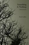 Something & Nothing - David Lindley