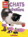 Chats Et Chatons - Honor Head