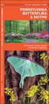 Pennsylvania Butterflies & Moths: A Folding Pocket Guide to Familiar Species - James Kavanagh, Raymond Leung, James Kavanagh