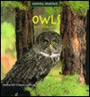 Owls And Their Homes - Deborah Chase Gibson
