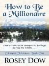 How to Be a Millionaire: Love Comes in an Unexpected Package During the 1880s - Rosey Dow
